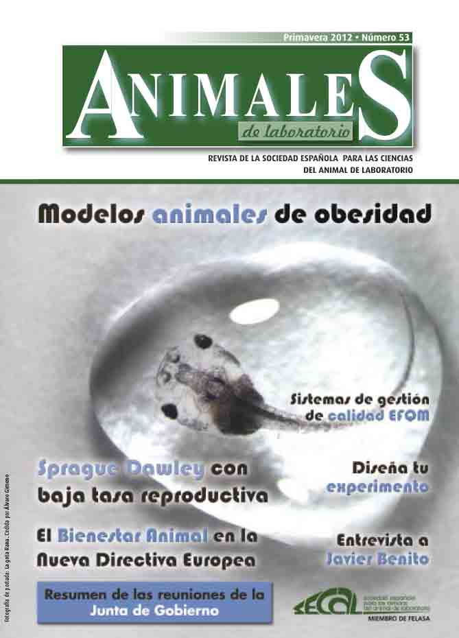 revista secal 53