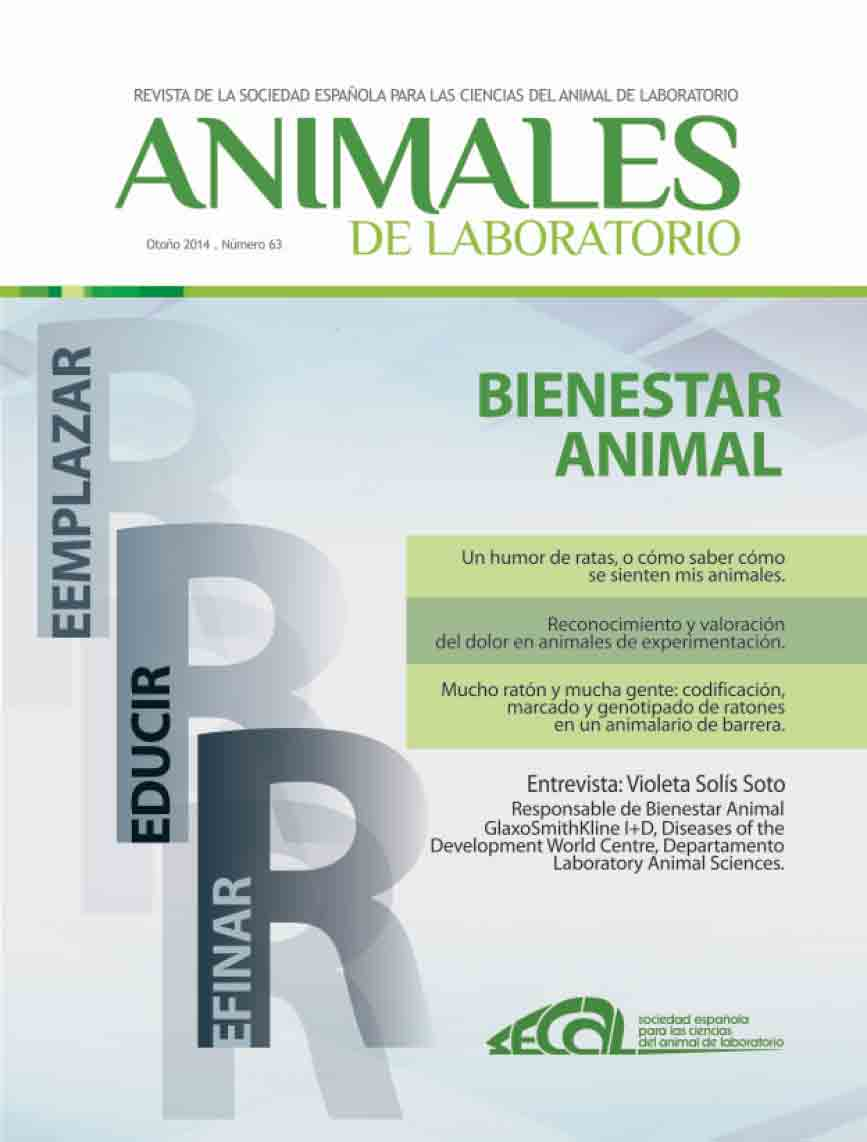 revista secal 63 1