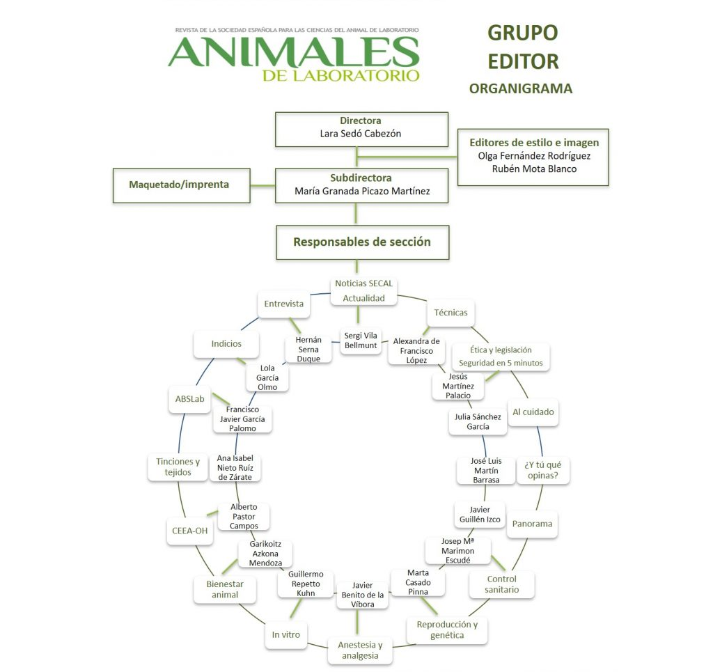 20191006 Organigrama Revista Animales de Laboratorio 2