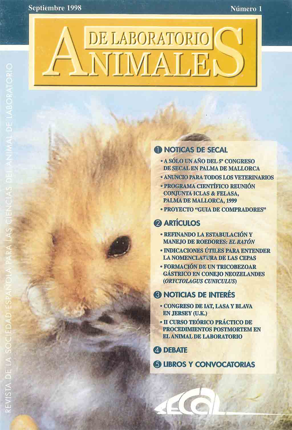 portada-revista-secal-1
