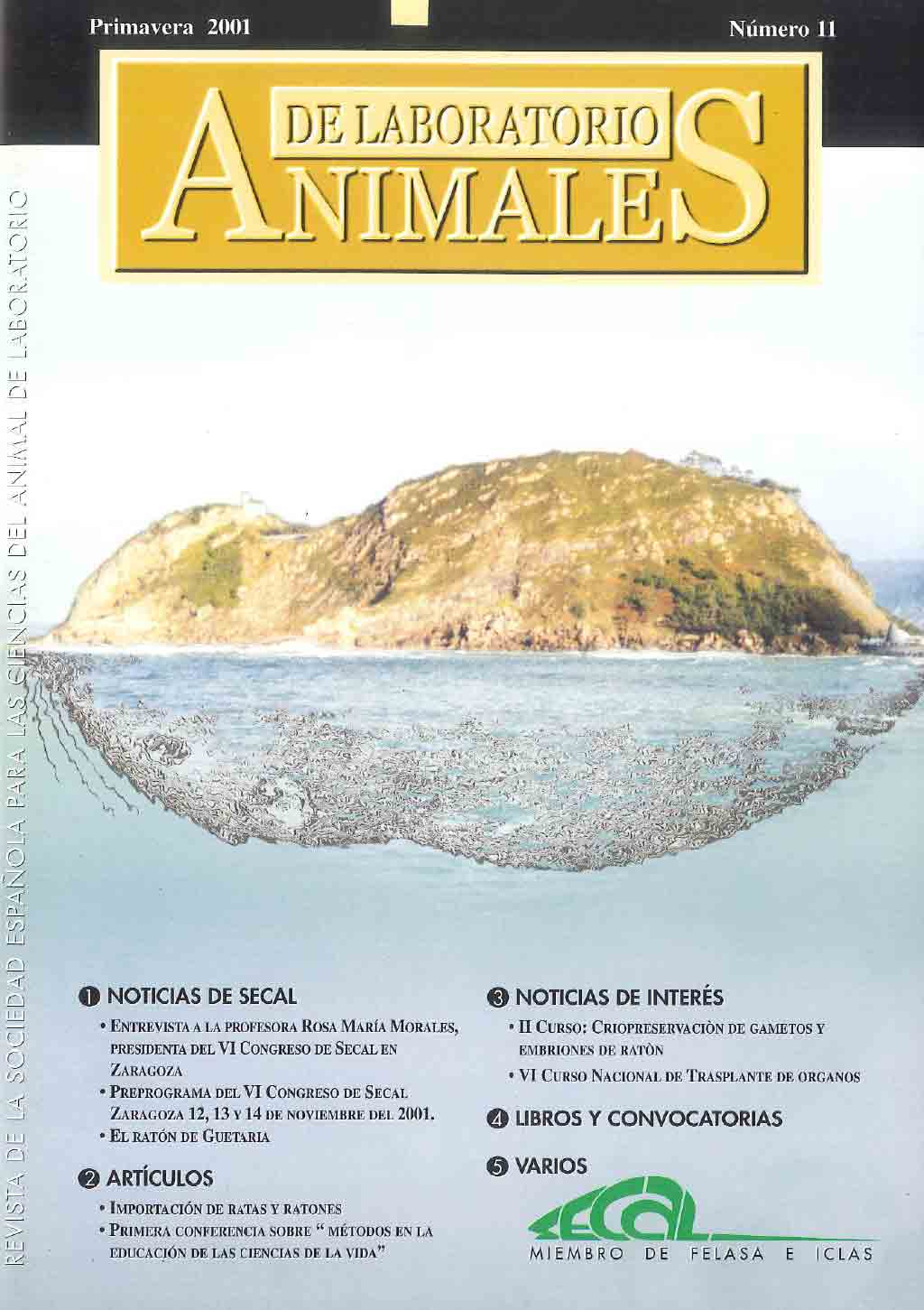 portada-revista-secal-11