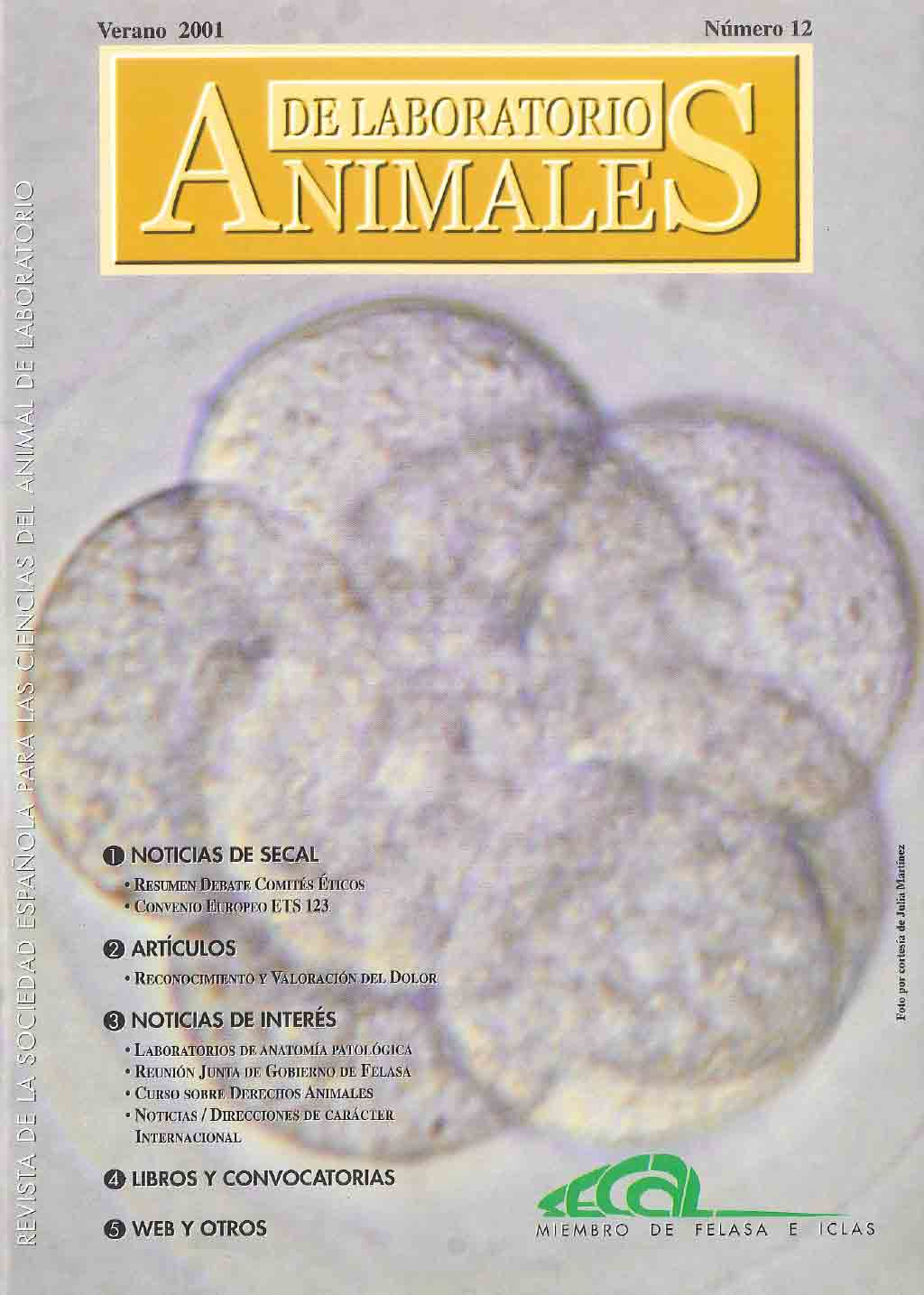 portada-revista-secal-12