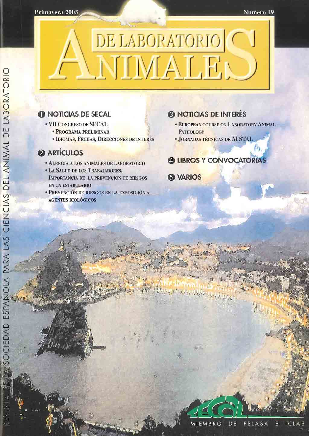 portada-revista-secal-19