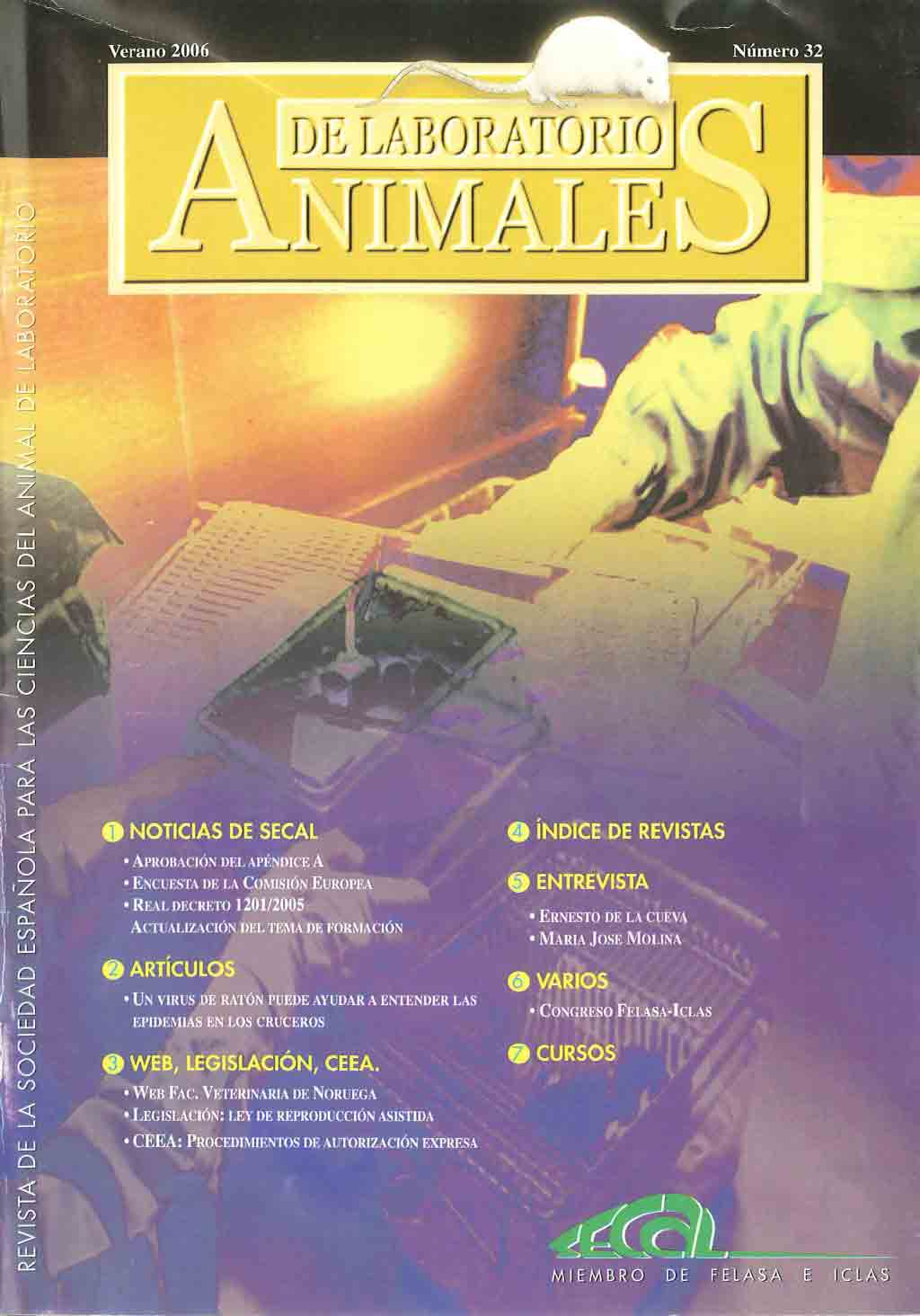 portada-revista-secal-32