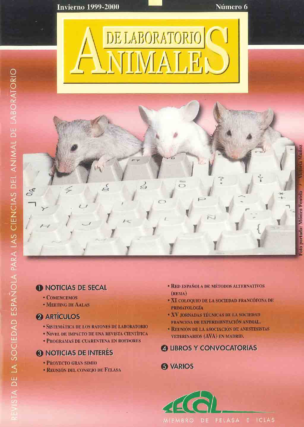 portada-revista-secal-6