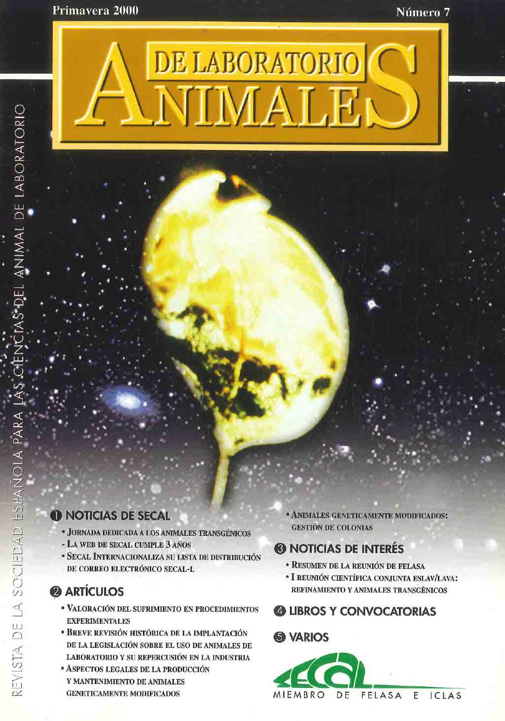 portada-revista-secal-7